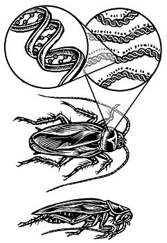 jaronlanier-archivalcockroach