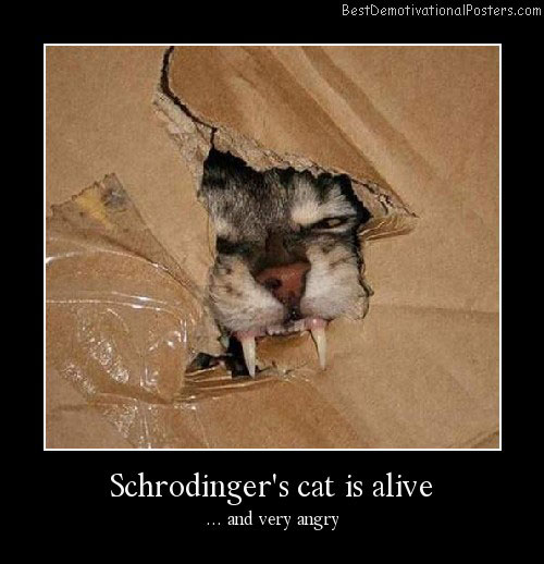 Schrodingers-cat-is-alive-Best-Demotivational-Posters