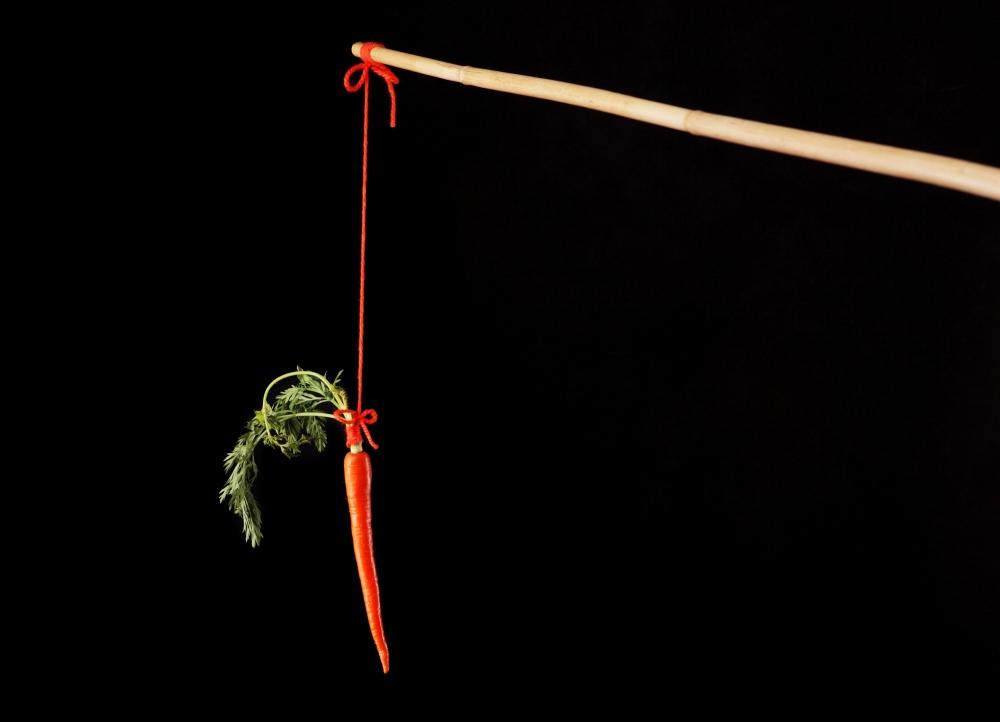 carrotstick.jpg