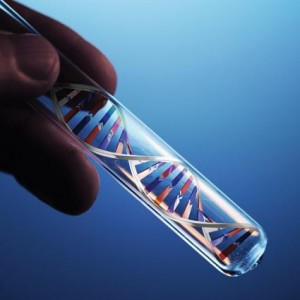 dna-in-test-tube-s600x600-300x300