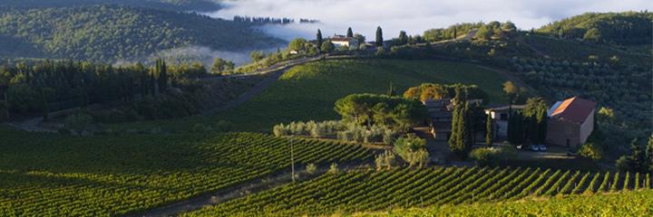fp_winery_1