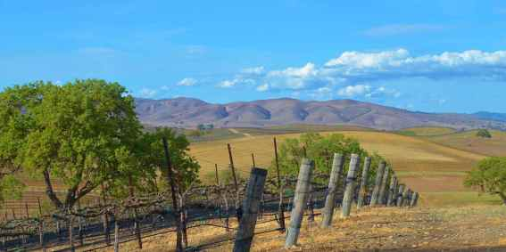 VC_HearstRanchWinery_Supplied_blue_skies_1280x640