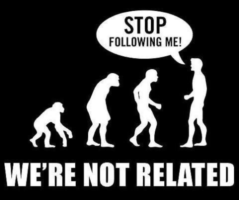 evolutionalturn